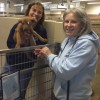 New initiatives aim to turn rescues into cherished pets