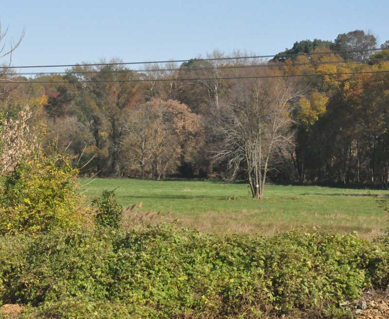 Because of the amount of wetlands on the tract, Pocopson Township officials suggested Monday that it might be impossible to develop much in the way of recreational facilities on three tracts donated to the township by Toll Brothers.