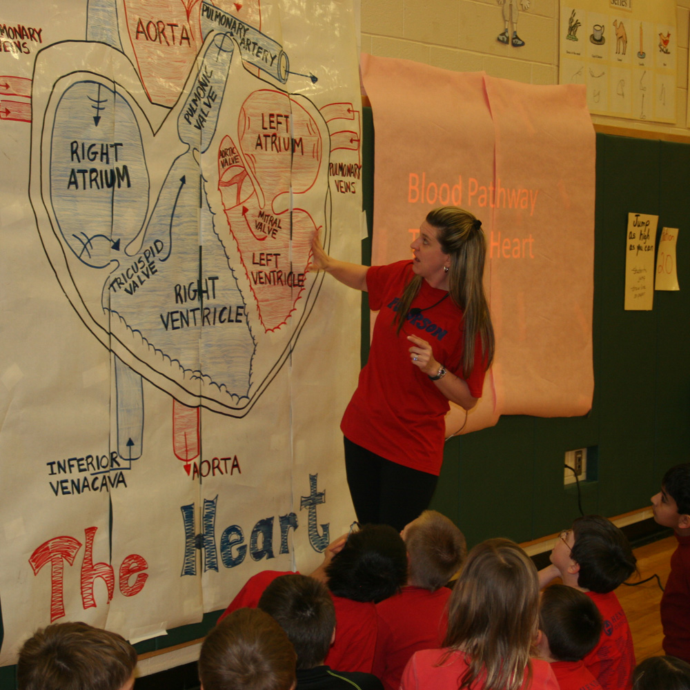 Pocopson Elementary Students Learn About Heart Health The