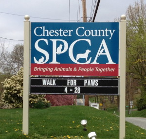 The 26th Annual Walk for Paws helps support the programs at the Chester County SPCA, an independent, nonprofit agency.