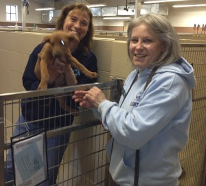 Michele Amendola (left), kennel coordinator at the Chester County SPCA, and Carin Ford, a board member, show off a Doberman pinscher puppy that they hope will be a short-time guest at the facility.