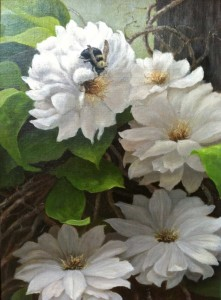 Clematis-and-a-Bumblebee-14.75__x-10