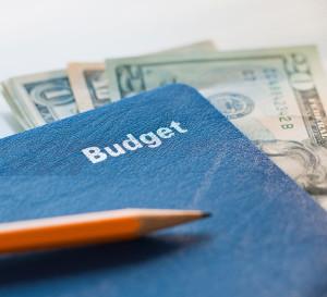 Budget-300x273.jpg