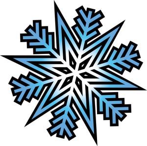 Snowflake-300x298.jpg