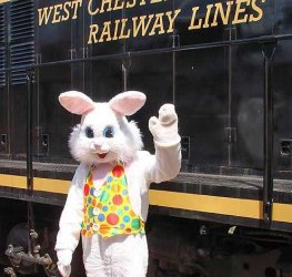 west-chester-railroad-easter-bunny-263x300.jpg