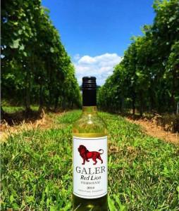Red-Lion-Chardonnay-in-Red-Lion-Vineyard-254x300-254x300.jpg