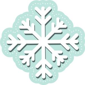 SnowflakeC1511_M_150_C_R-300x300.jpg
