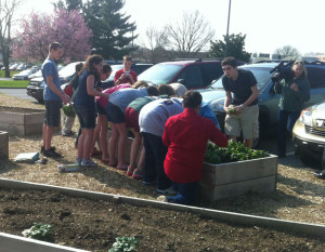 Students from Charles S. Patton Middle School pick spinach as a videojournalist from NBC-10 looks on, after being awarded a $5,000 grant, Friday.