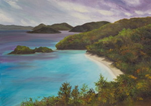 "An exhibition by painter Annette Alessi, including ""Trunk Bay Beach,"" will be on display through May 31. Twenty percent of the proceeds from sales will benefit Children's Hospital of Philadelphia's pediatric cancer research."