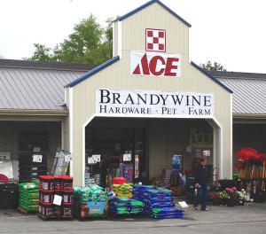 BrandywineAce