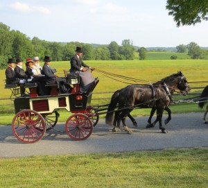 An elegant carriage parade is a popular tradition of the Chester County SPCA's annual Forget-Me-Not fund-raiser.