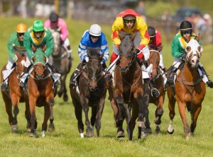 The organizers of the Willowdale Steeplechase announced that they have given out $55,000 to local charities, funds generated by this year's Steeplechase. Photo: Jim Graham Photography