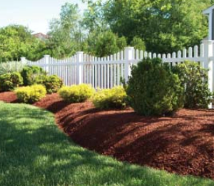 The Chester County Health Department recommends create a woodchip or mulch barrier between wooded areas and yards to reduce the risk of ticks.