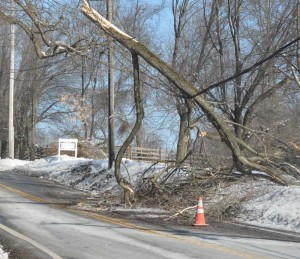Days into recovery efforts, this large tree branch rests on power lines — blocking southbound traffic — in East Fallowfield, Friday. Although power has been restored to more than 80,000 PECO customers in Chester County, as of Friday morning, more than 130,000 were said to still be without power from the early Wednesday morning ice storm.
