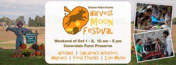 harvest-moon-festival