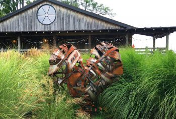 Lele Galer's heart sculpture at Galer Estate Vineyard and Winery.