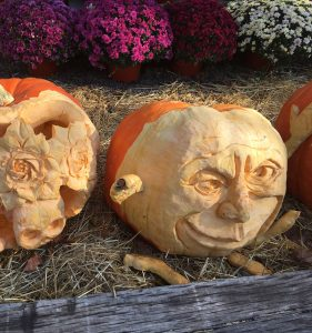 Carved pumpkins from the Chadds Ford October Great Pumpkin Carve donated by H.G. Haskell of SIW Vegetables on Route 100.